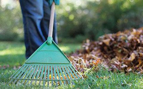pegase partners nettoyage lille espaces verts diapo photo